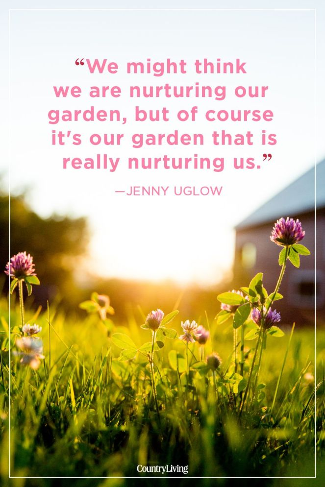 jenny-uglow-summer-quote-1524853749